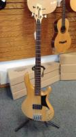 Washburn RB-2000 Bass Guitar (RB-2000)